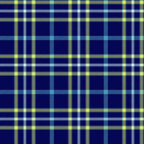 """Alaska modern flag tartan, 3"""" bright"""