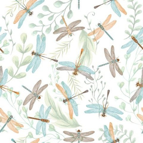 Brown and Blue Dragonflies