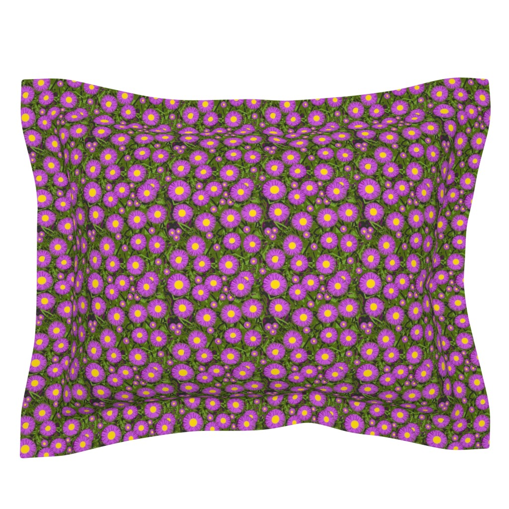 Sebright Pillow Sham featuring Asters in the light - Purple w/ yellow centers   by franbail