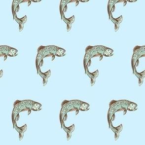 Blue Trout