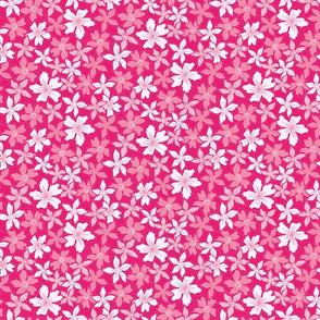 Wild spring flowers pink