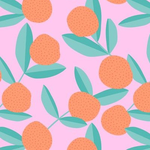 Citrus summer garden fruit and leaves botanical branch tropical spring design mint pink orange lemonade