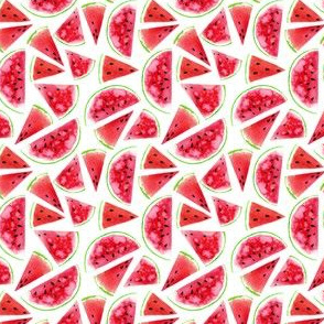 watermelon slices -small scale watercolor painted summer food graphic