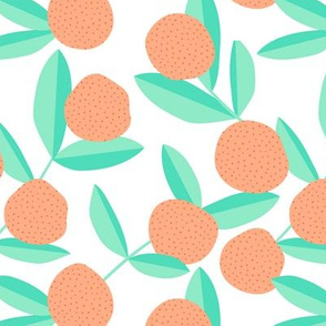 Citrus summer garden fruit and leaves botanical branch tropical spring design mint orange lemonade