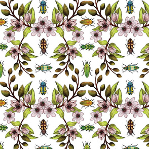 Jewel Beetles - Insect Pollinators with Magnolia Figo/Banana Shrub Flowers