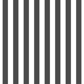 """stripes 1/2"""" dark grey vertical"""