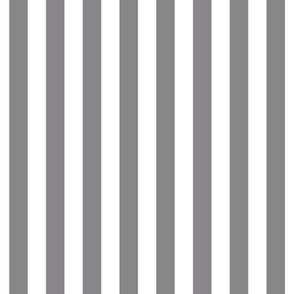 "stripes 1/2"" granite grey vertical"