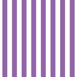 "stripes 1/2"" amethyst purple vertical"