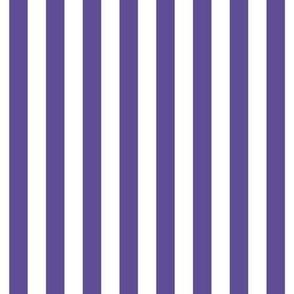 "stripes 1/2"" purple vertical"