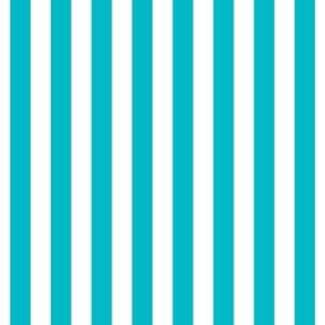 """stripes 1/2"""" surfer blue vertical"""