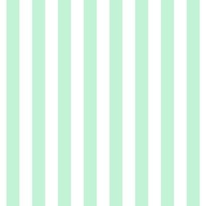 "stripes 1/2"" ice mint green vertical"