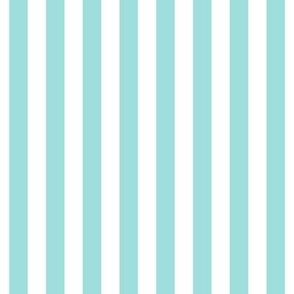 """stripes 1/2"""" light teal vertical"""