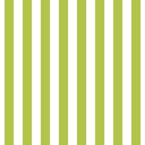 "stripes 1/2"" lime green vertical"