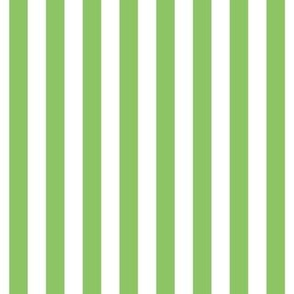 "stripes 1/2"" apple green vertical"