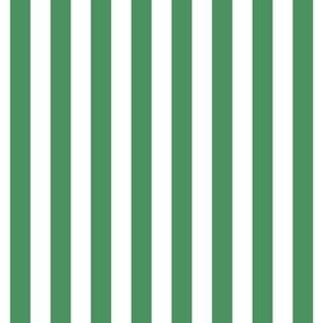 "stripes 1/2"" kelly green vertical"