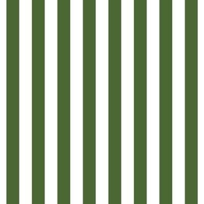 "stripes 1/2"" hunter green vertical"