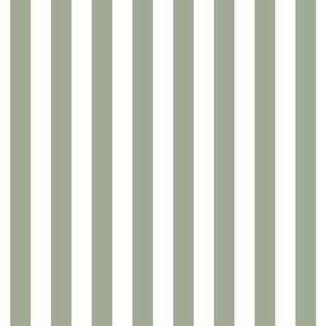 """stripes 1/2"""" sage green vertical"""