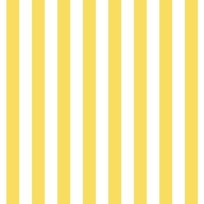 """stripes 1/2"""" butter yellow vertical"""