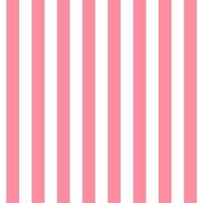 "stripes 1/2"" pretty pink vertical"