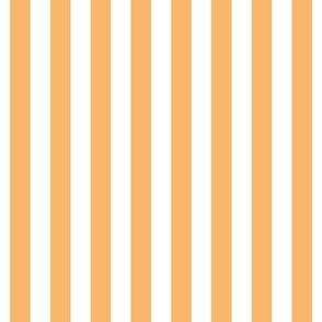 "stripes 1/2"" mango orange vertical"