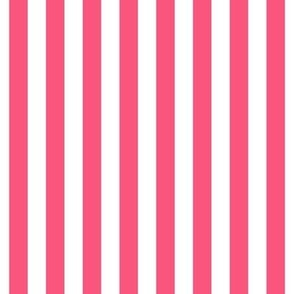 "stripes 1/2"" hot pink vertical"