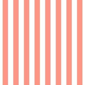 """stripes 1/2"""" peach vertical"""