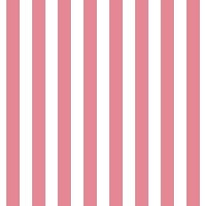 "stripes 1/2"" berry cream vertical"