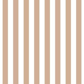 "stripes 1/2"" toasted nut vertical"
