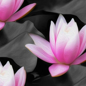 pink water lily - painting effect - large