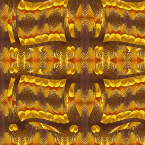 Yellow Orange Iris Pattern