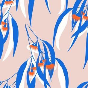 orange blue eucalyptus