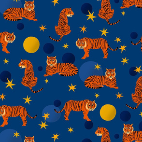 Cosmic Tigers