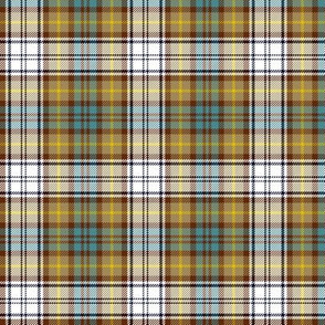 "Gordon dress tartan, 3"" weathered colors"