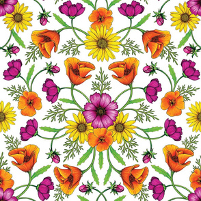 Wildflower Garden - Cosmos, California Poppies & Yellow Daisies for Spring