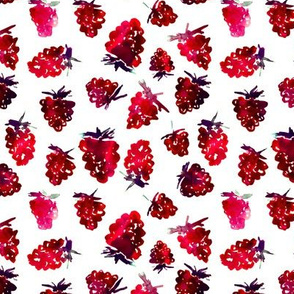 Watercolor raspberries