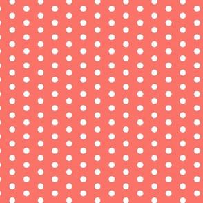 19-04K Coral Tiny Polka Dot