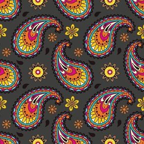 Bollywood at Night Rainbow Paisley Pattern