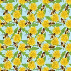 Hoverflies and Dandelions