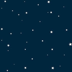 Woollypetals Starry Eyed Navy