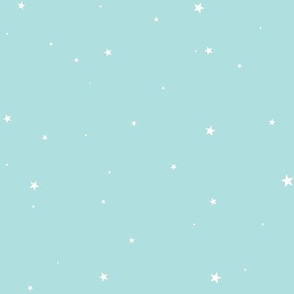 Woollypetals Starry Eyed Pale Aqua