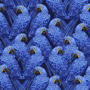 Hyacinth Macaws Flock (navy) 14""