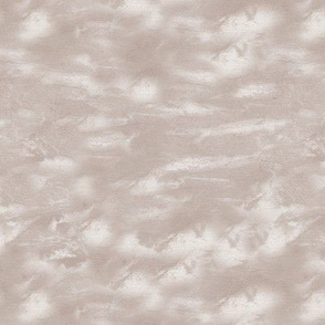19-05x Taupe Cloud Blender