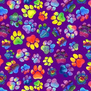 Rainbow Paw Prints on Purple