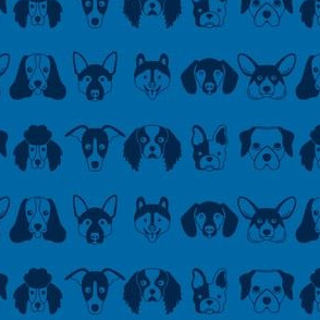 Blue Dogs Faces