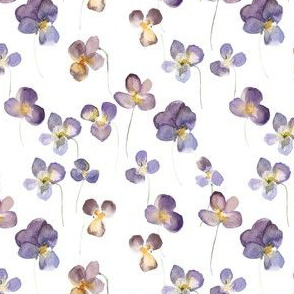 Violets - Small