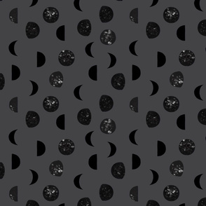speckled black moon phases // 179-14
