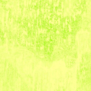 19-06V Lemon Lime Green Blender