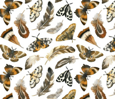 feathers & moths - white, large