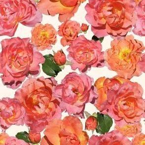 19-06P Coral Rose Floral