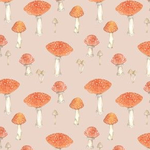 Fly agaric toadstools
